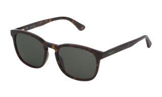 Óculos de sol Police SPL997 Castanho Redonda